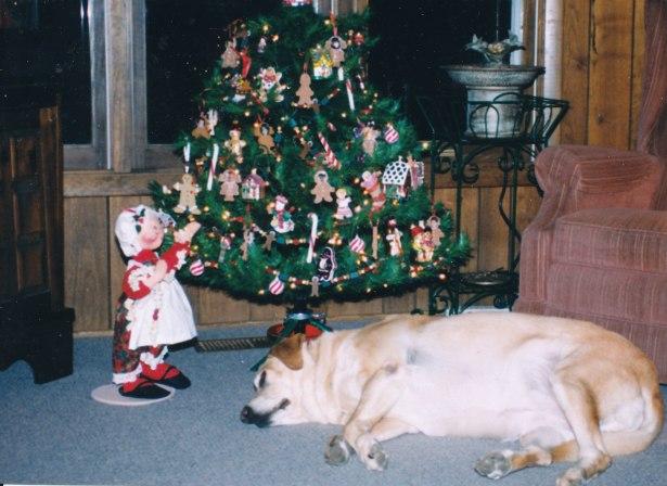 Molly gingerbread tree